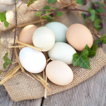 Carmel-Valley-Ranch_Stock_Easter-Eggs
