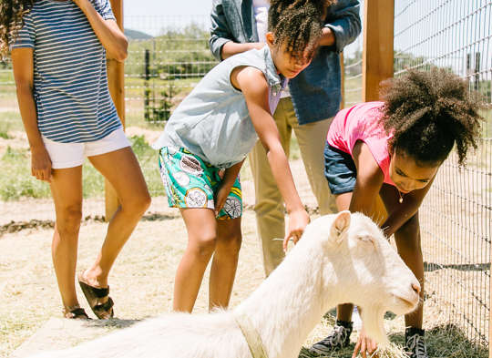 Carmel Valley Ranch_Lifestyle_goat barn_family with goats_4744_KD