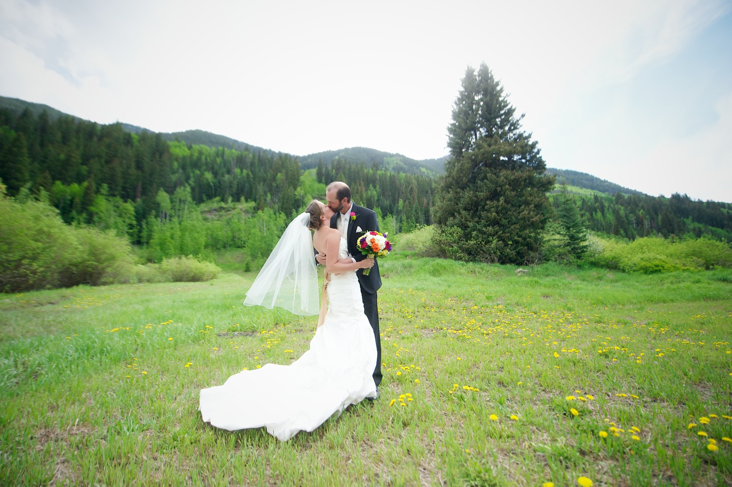 Mountain Top Weddings