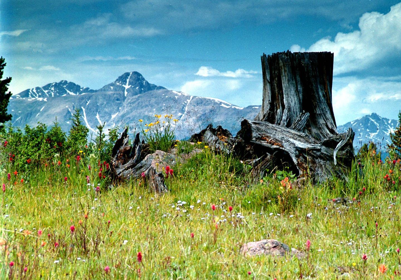 Holy Cross Mountain Summer
