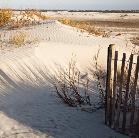 Wild Dunes_Nature_SandDunes