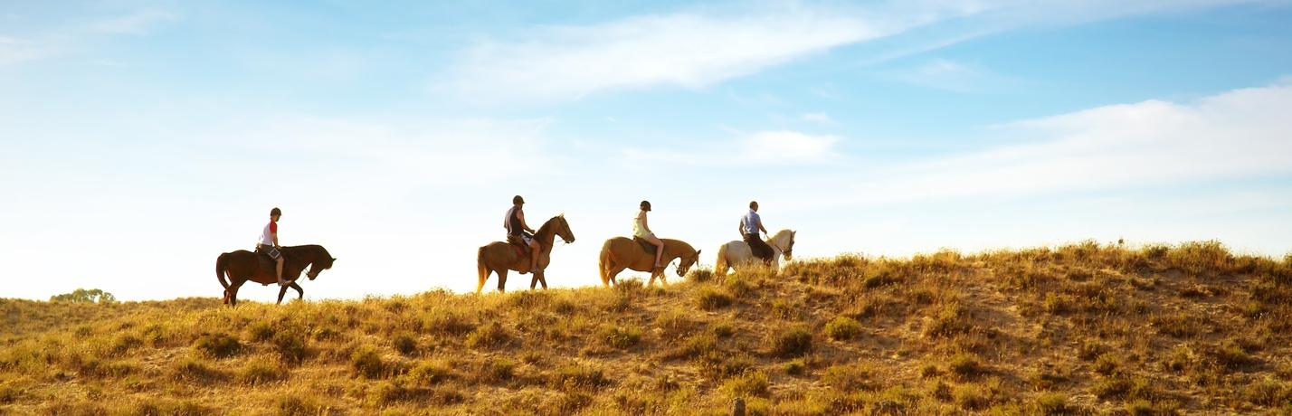 Activity_Horseback_Group