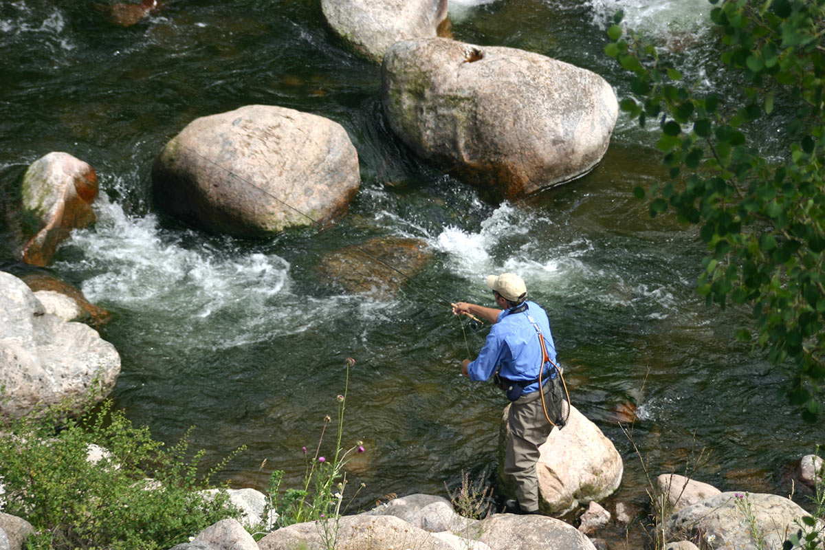 Fly Fishing on Gore Creek