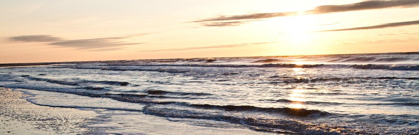 Wild Dunes_Nature_OceanSunrise
