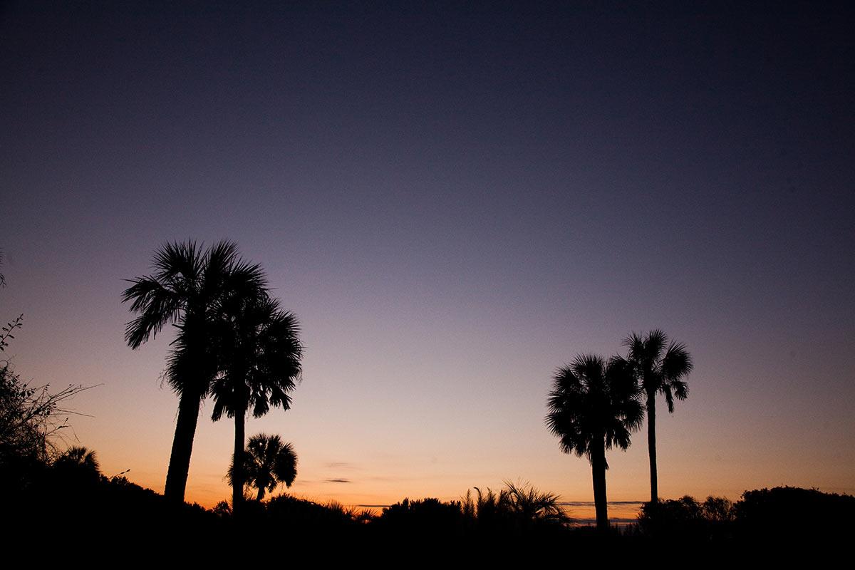 Isle of Palms and Charleston