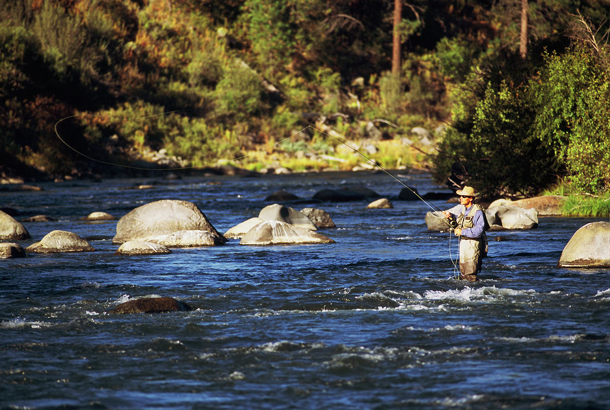 Fly Fishing, river
