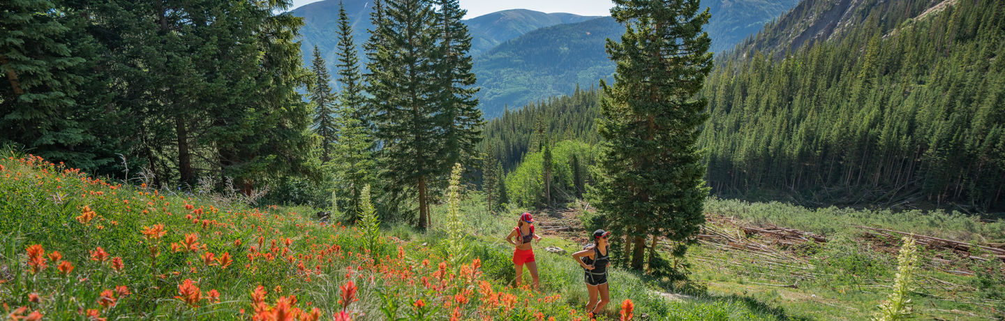 A hike through the wildflowers in Snowmass, Colorado