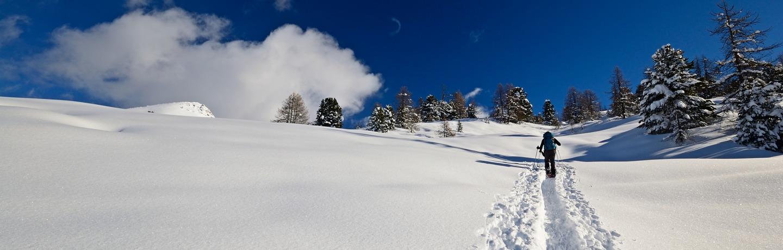 Skiing In Deep Snow