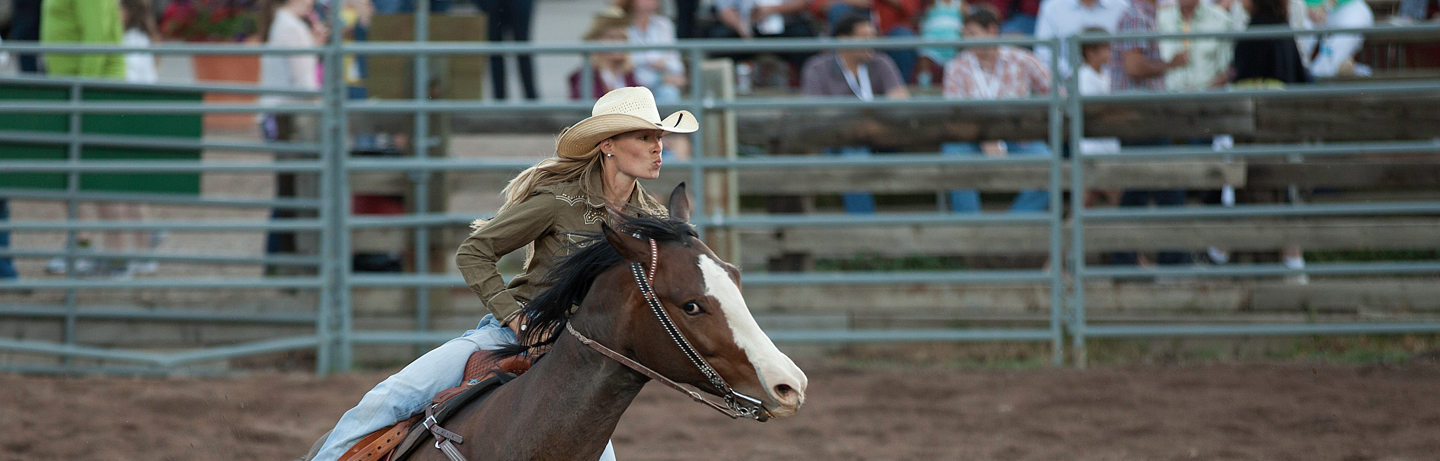 drsnowmass_events_rodeo
