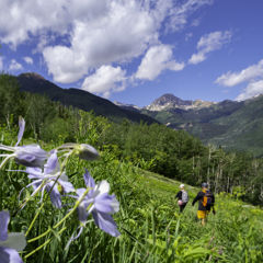 Hiking the Ditch Trail in Snowmass, Colorado
