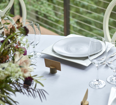 drsnowmass_events_tov_2placesetting2021