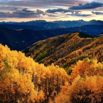 drsnowmass_location_fall_trees
