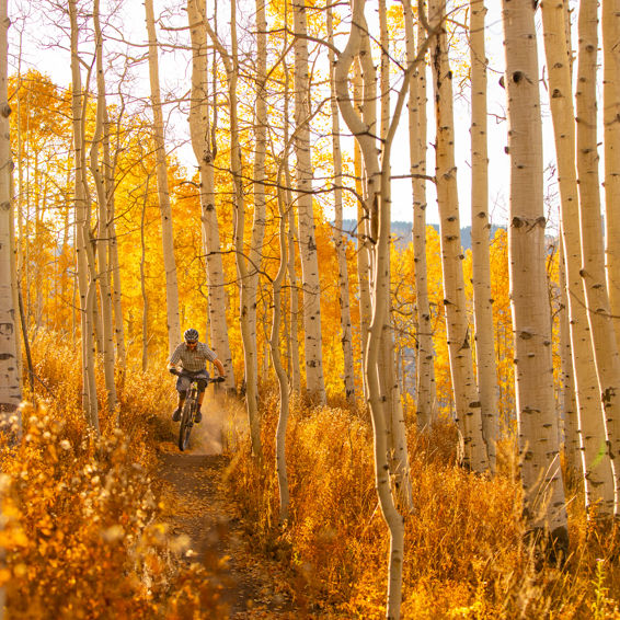 Mountain biking in the Roaring Fork Valley