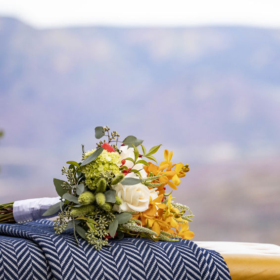 Elope To Snowmass