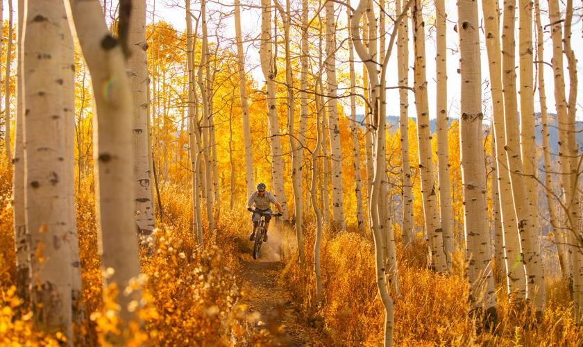 Mountain biking in the Roaring Fork Valley