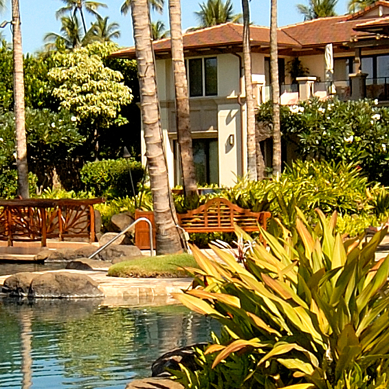 DR_Hawaii_WBV_Grounds_Exterior_Pool