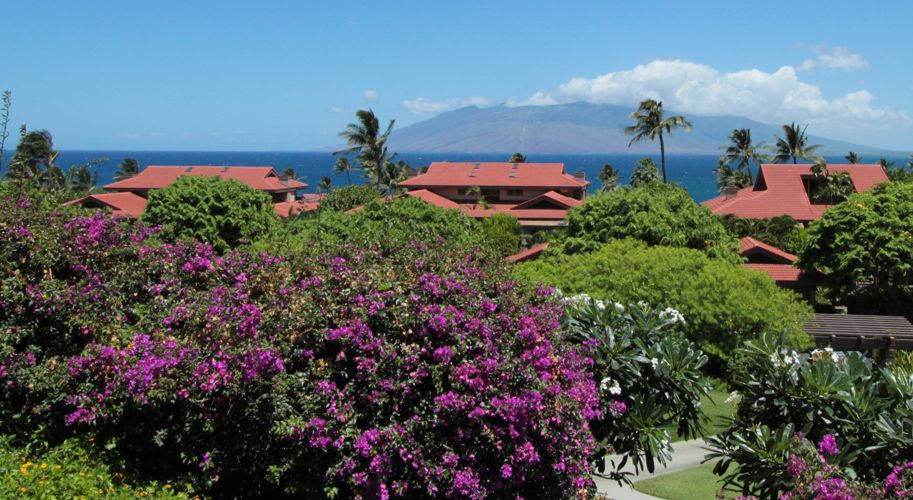 Wailea Point Resort Exterior