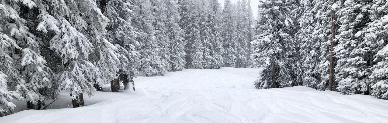 snow picture 1.23.20