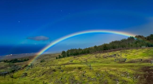DR_Hawaii__Rainbow_cyber