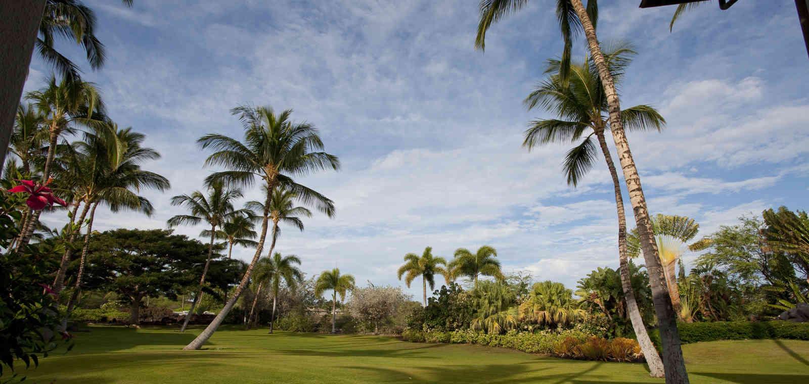 DR_Hawaii_Classic_TI_SYC_P1 (2)