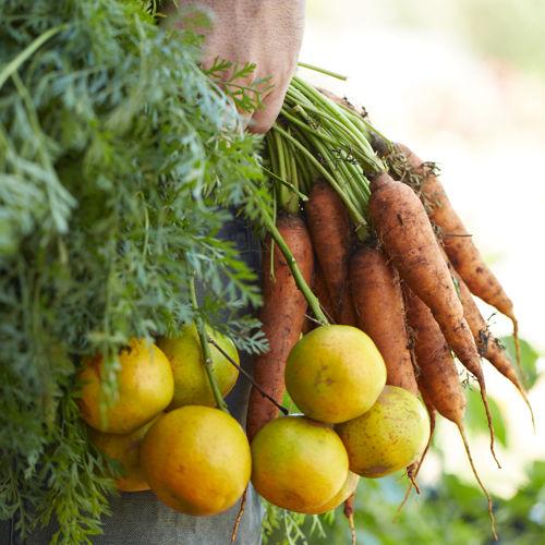 Kauai crops