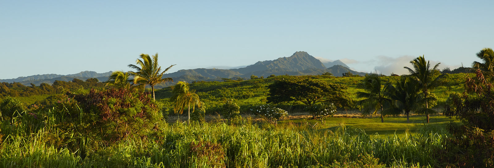 Kauai mountain view