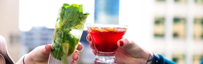 Happy Hour Cheers - Frolik Deck