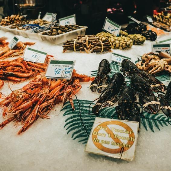 abundance-buffet-crab-2031994