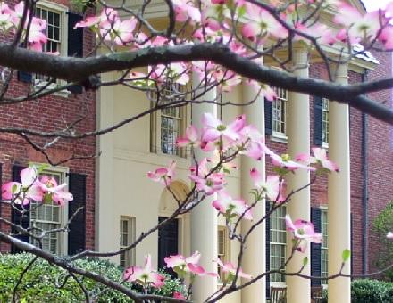 Dubose House Exterior with Dogwood Flowers