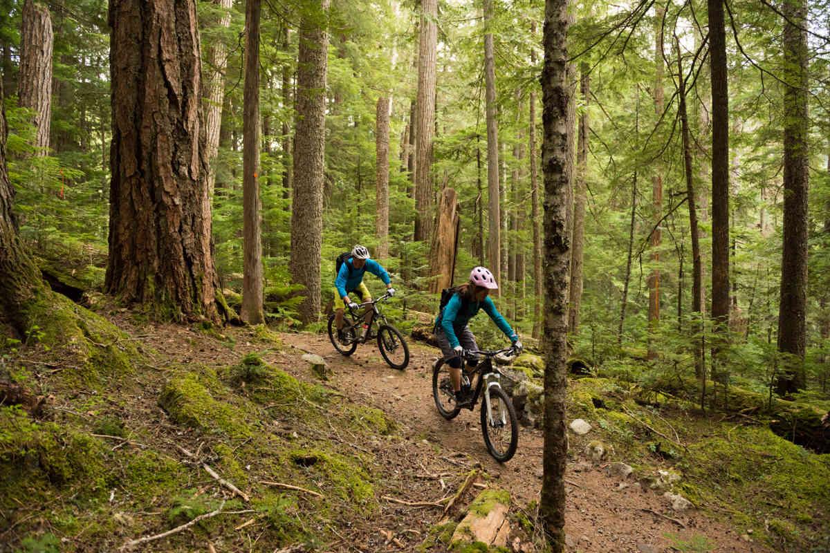 Mountain Biking in the woods