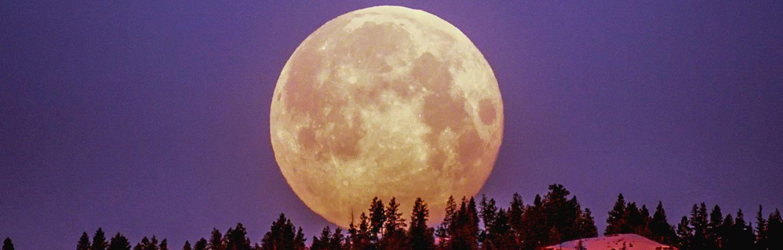 Full Moon Snowshoe