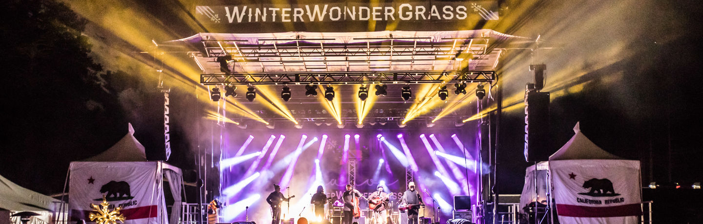WinterWonderGrass Night Stage