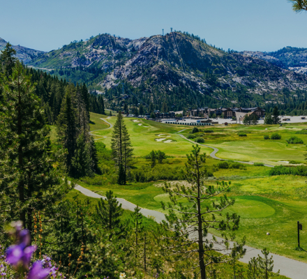 RSC_Rooms_Summer_Golf_Upper Wildflower shot