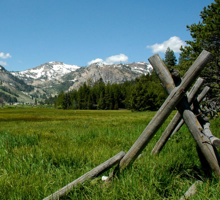 Valley Meadow Fence