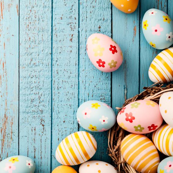 Easter in Tahoe!