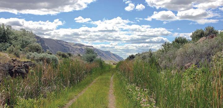 hiking trail near suncadia resort