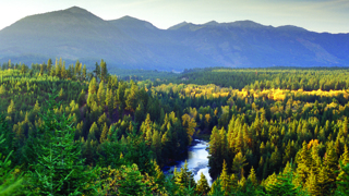 river_fall_view_2