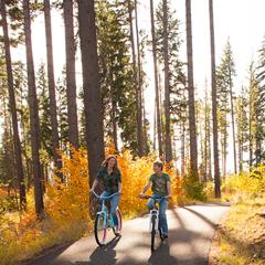 summer recreation on bikes