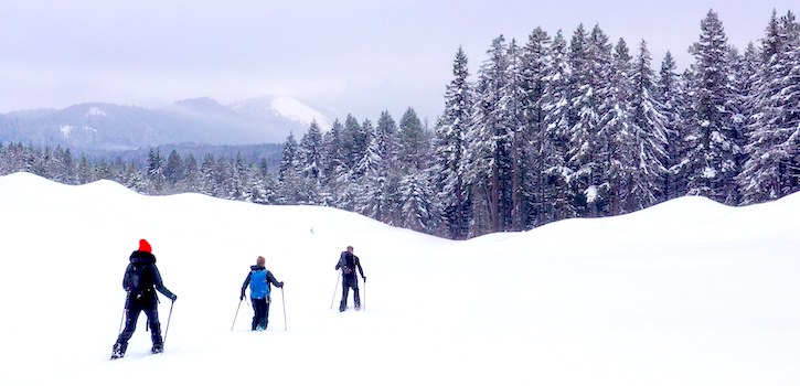 Cross Country Skiing at Suncadia Mountain Resort