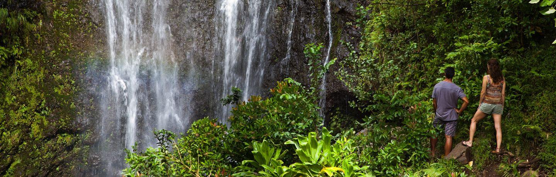 Maui waterfall