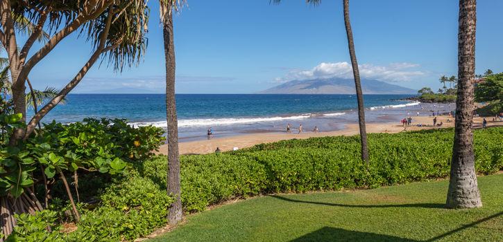 DR_Hawaii_Polo Beach_Grounds_Beach