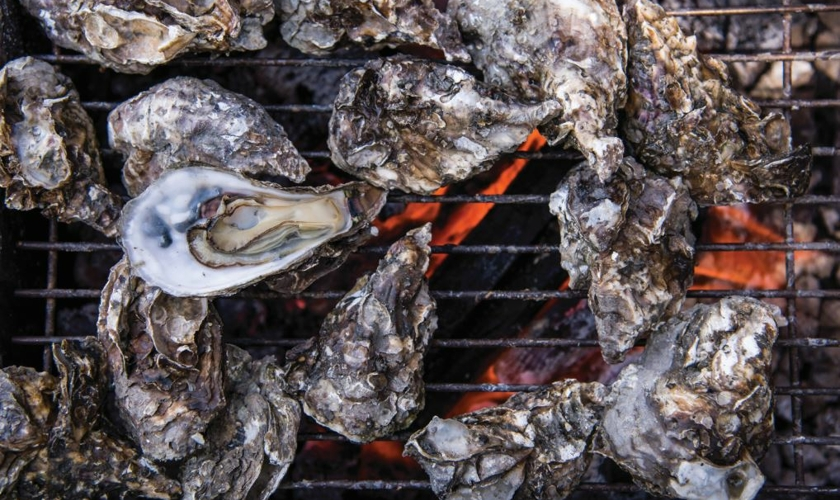 Lowcountry Cooking Oysters