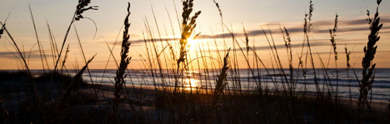 WDR_Resized_CVB_Sunrise Sea Oats