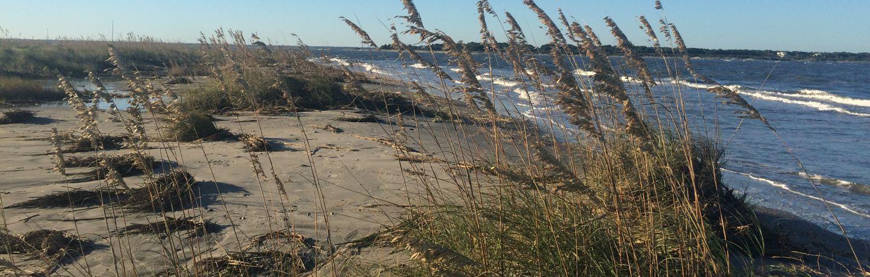 Wild Dunes_Destination Discovery_Beach Stroll