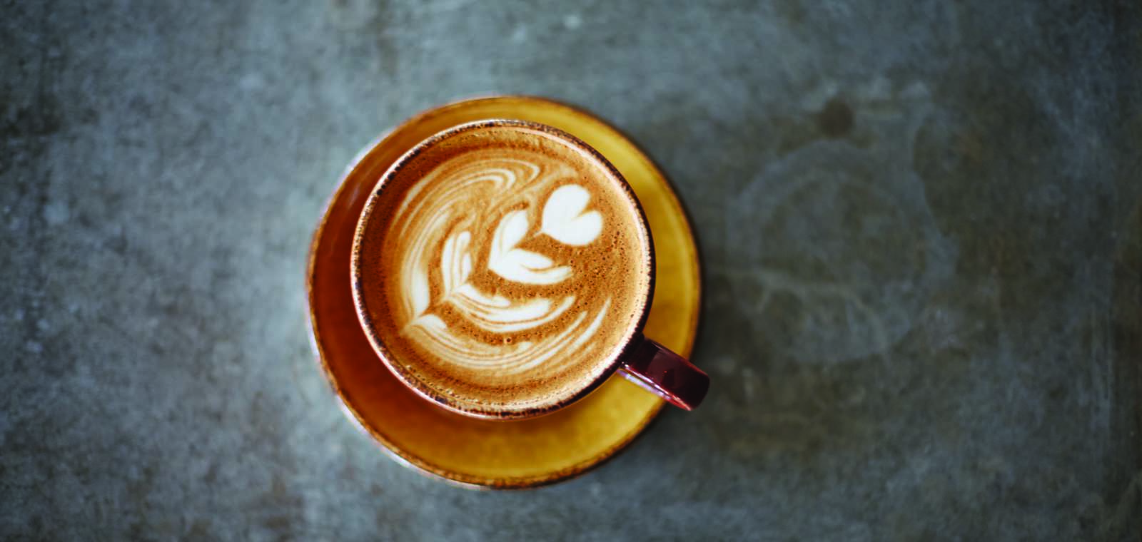Lincoln Elaine Coffee Detail KI1113