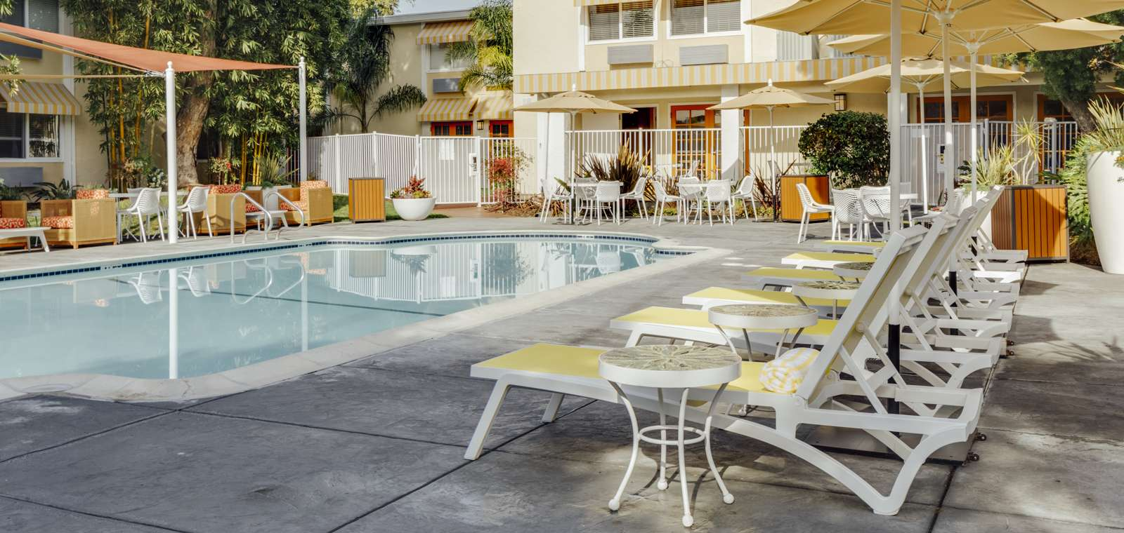 Wild Palms Pool
